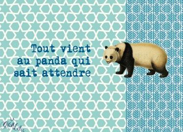 Proverbes déguisés : Panda (projet)