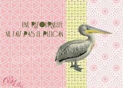 Proverbes déguisés : Pélican (projet)