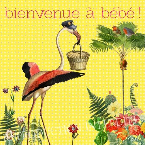 Carte Bébé (Editions Côté Bord'eau)
