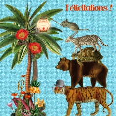 Carte Félicitations (Editions Côté Bord'eau)