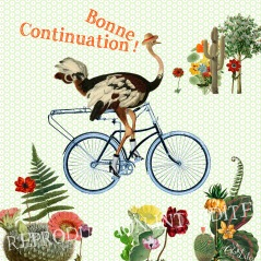 Carte Continuation (Editions Côté Bord'eau)